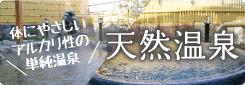 体にやさしいアルカリ性の単純温泉 天然温泉